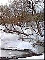 Речка Нахабинка (Грязева) - panoramio.jpg