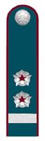 Секретарь гос.гражданской службы РФ 2 класса ФНС.png