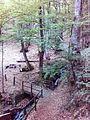 Смоларски водопад 30.jpg
