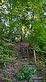 Стежка на Барвінкову гору.jpg