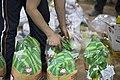 بسته بندی کمک های بشردوستانه و مردمی برای زلزله زدگان قصر شیرین Humanitarian aid- Iran Kermanshah 09.jpg