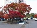 古牧溫泉格蘭德飯店 (現青森屋西館) Komaki Onsen Grand Hotel (now Aomori-ya West Hall) - panoramio.jpg