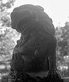 普陀山石狮子.jpg