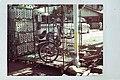 檻の中の自転車 - panoramio.jpg
