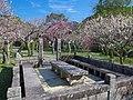 観心寺にて 2013.3.15 - panoramio (1).jpg