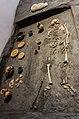 - Museo Delta Antico - Comacchio - 30 -.jpg