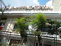 04184jfIntramuros Manila Heritage Landmarksfvf 05.jpg