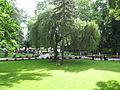 1323 Międzyzdroje, park zdrojowy 1.JPG