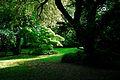 150510 183332 Giardino di Ninfa.jpg