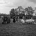 1958 visite d'une délégation INRA au Haras du Pin Cliché Jean Joseph Weber-28.jpg