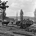 1960 Parc à taureaux du CNRZ-1-cliche Jean-Joseph Weber.jpg