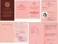 1990 USSR Passport.png