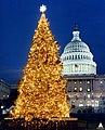 1996 U.S. Capitol Christmas Tree (31805188425).jpg