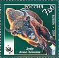 2007. Марка России stamp hi12612452964b2d1370a1b58.jpg