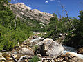 2014-06-23 14 50 09 View up Lamoille Creek from near the Changing Canyon Nature Trail in Lamoille Canyon, Nevada.JPG