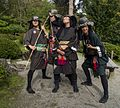2014 Seattle Japanese Garden Maple Viewing Festival (15365028838).jpg
