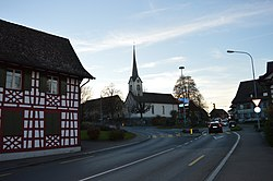 2015-11-08-Kesswil (Foto Dietrich Michael Weidmann) (4).JPG