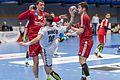 20170112 Handball AUT CZE 5835.jpg