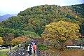 20171030 Shiragawa 2475 (24270492347).jpg
