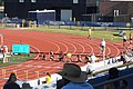 2017 Lone Star Conference Outdoor Track and Field Championships 26 (women's 100m hurdles finals).jpg