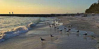 Anna Maria Island - Cortez Beach