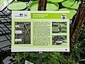 2018-06-18-bonn-meckenheimer-allee-169-botanischer-garten-victoriahaus-06.jpg