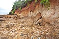 23-Erosion Red Cliffs of Scarborough March12 (6839430724).jpg
