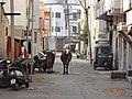26th Digvijay Plot Street Photo - panoramio.jpg