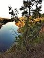 3755. Novokhopyorsk. Khopyor River.jpg