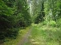 500 метров от Белоруссии - panoramio.jpg
