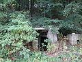 616225 pow krakowski gm Zabierzow. Zespol willi w Kochanowie ogrod A446 M 13.JPG