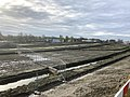 7958.Westpark.Crematorium.DeHeld.Hoendiep.Dela.jpg