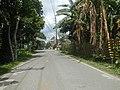 9759Poblacion III Del Carmen, Alaminos, Road 24.jpg