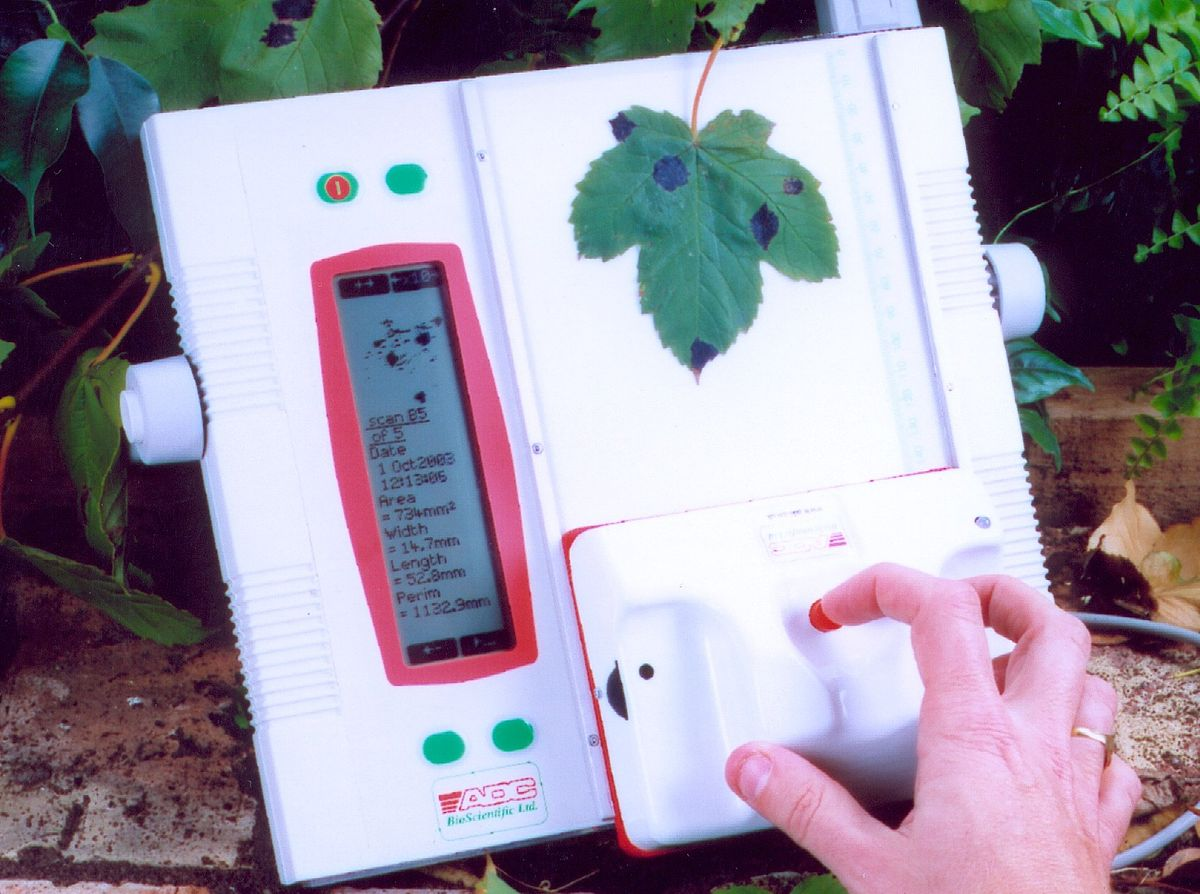Leaf Area Meter Equipment : Specific leaf area wikipedia