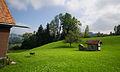 AR Sturzenegg Bauernhaus beehive.jpg