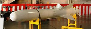 Type 80 Air-to-Ship Missile - Image: ASM 1新田原