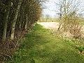 A Grassy Road - geograph.org.uk - 342792.jpg