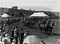 A large crowd watches a procession of horses and riders (AM 80189-1).jpg