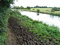 A right royal mess of a towpath on the Royal Canal near Enfield, Co. Meath - geograph.org.uk - 1429181.jpg