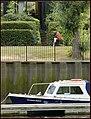 A summer's day nr. Teddington Lock. - panoramio.jpg