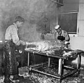Abattoirs CNRZ 1960 Cliché Jean Joseph Weber-1.jpg