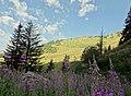 Abondance, France - panoramio (2).jpg