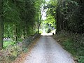 Access Drive to Trevor Hall - geograph.org.uk - 924466.jpg