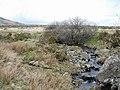 Afon Dulyn - geograph.org.uk - 157496.jpg