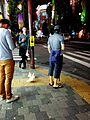 Akihabara in Tokio - 007.jpg