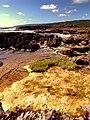 Albany coast - panoramio.jpg