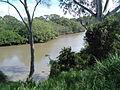 Albert River 2.JPG