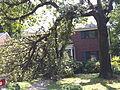 Alexandria Storm, August 2010 (4872211893).jpg