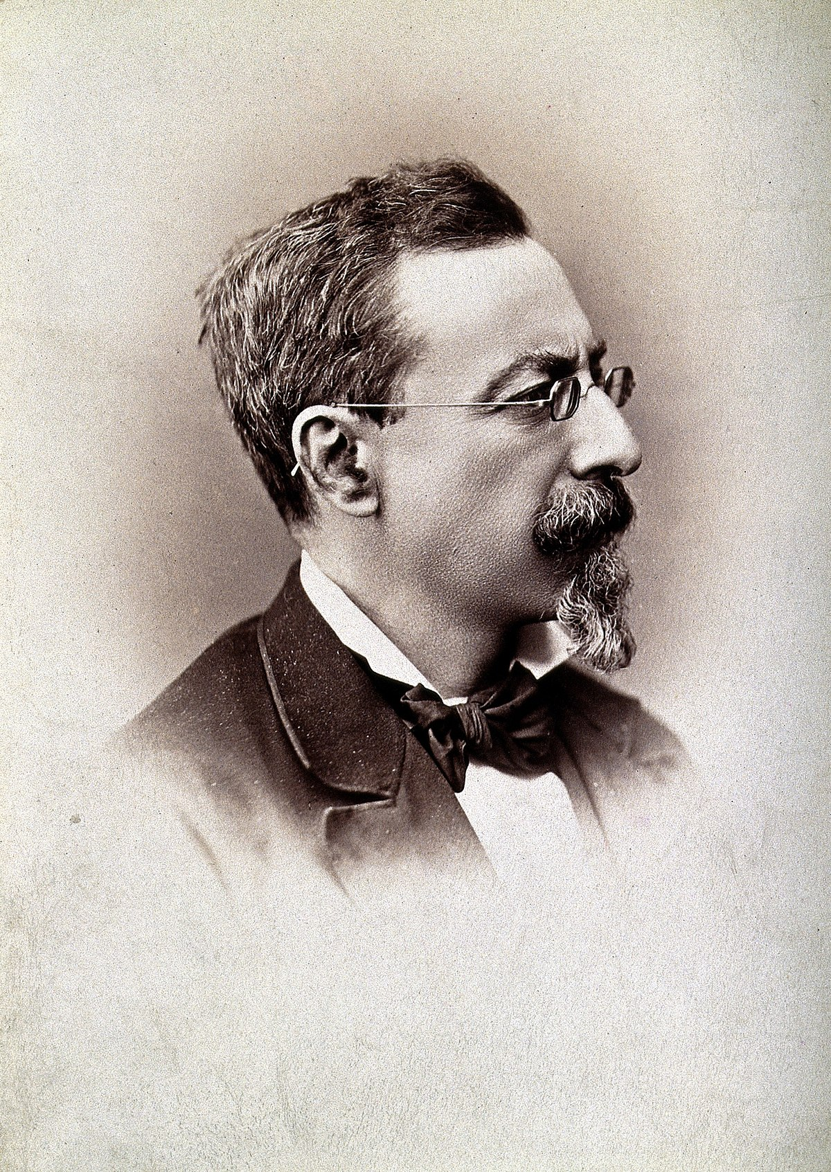 Alfonso L Herrera Wikipedia