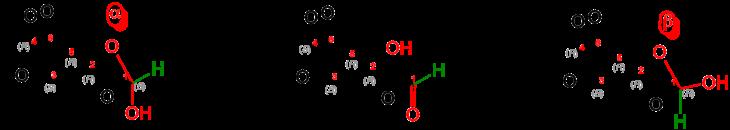 Alpha + beta D-Galactose (PYRANOSE) V.3.png